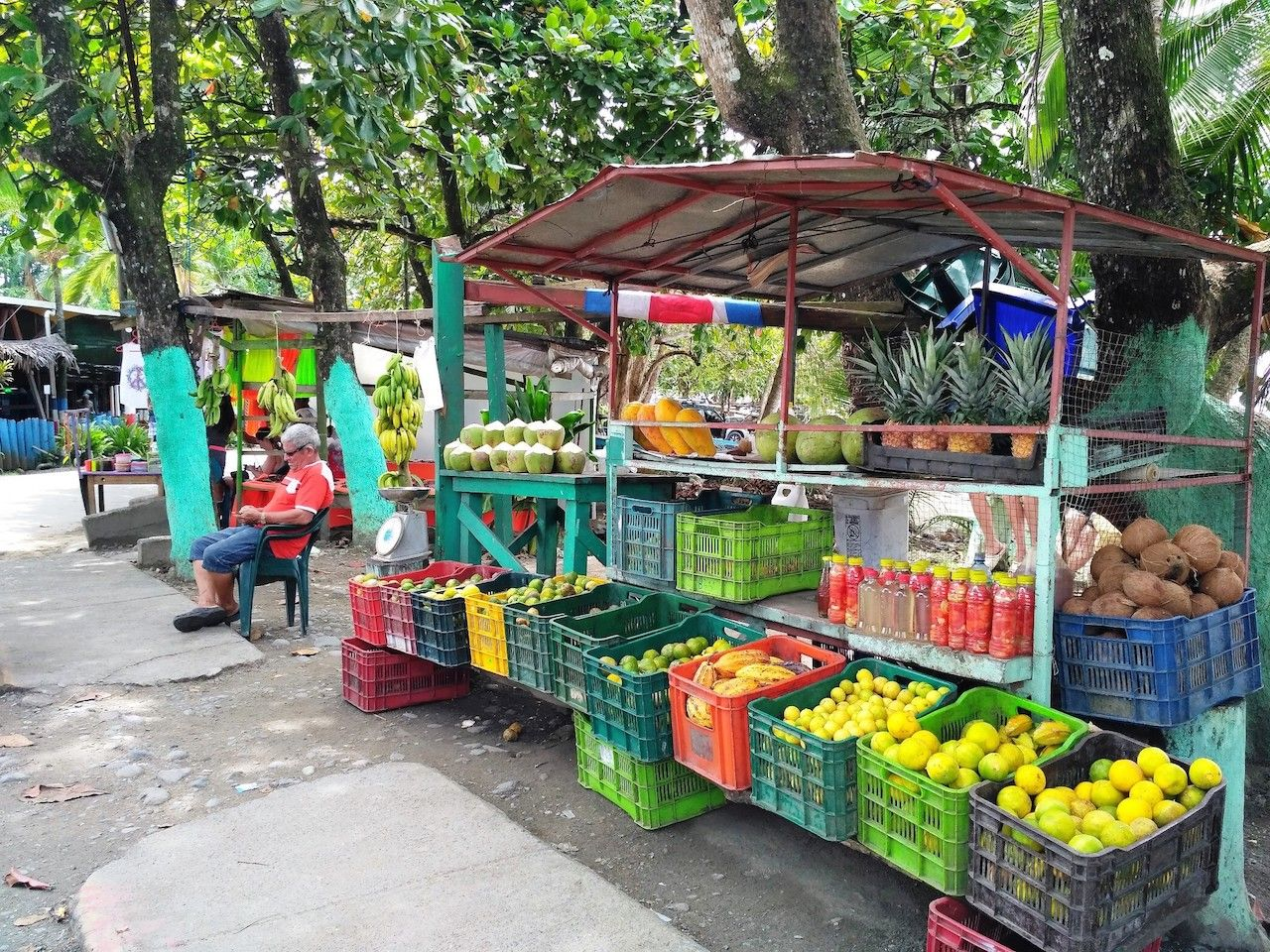 Man sitting in front of his stands with tropical fruit at traditional farmers market in Puerto Viejo, Costa Rica