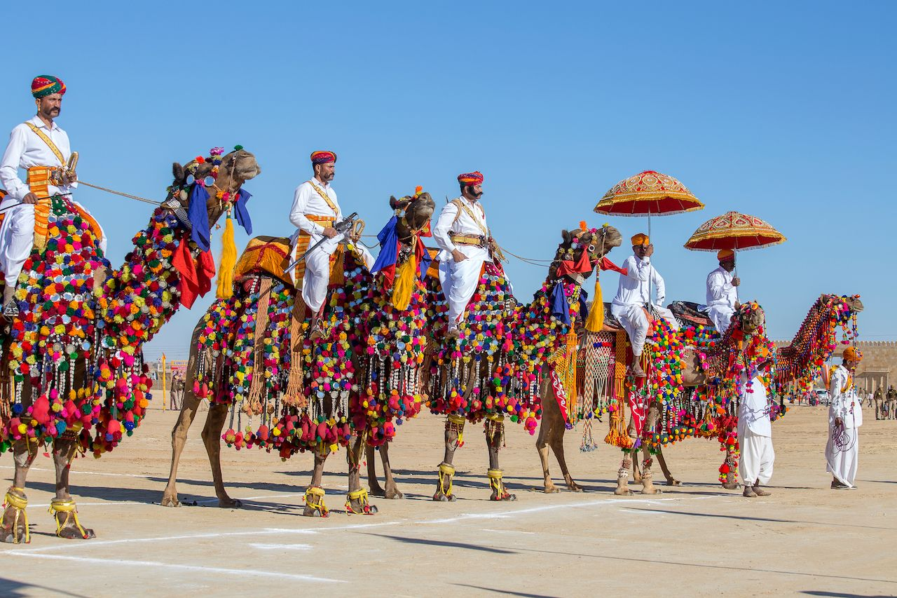 Men riding brightly costumed camels in Jaisalmer, India