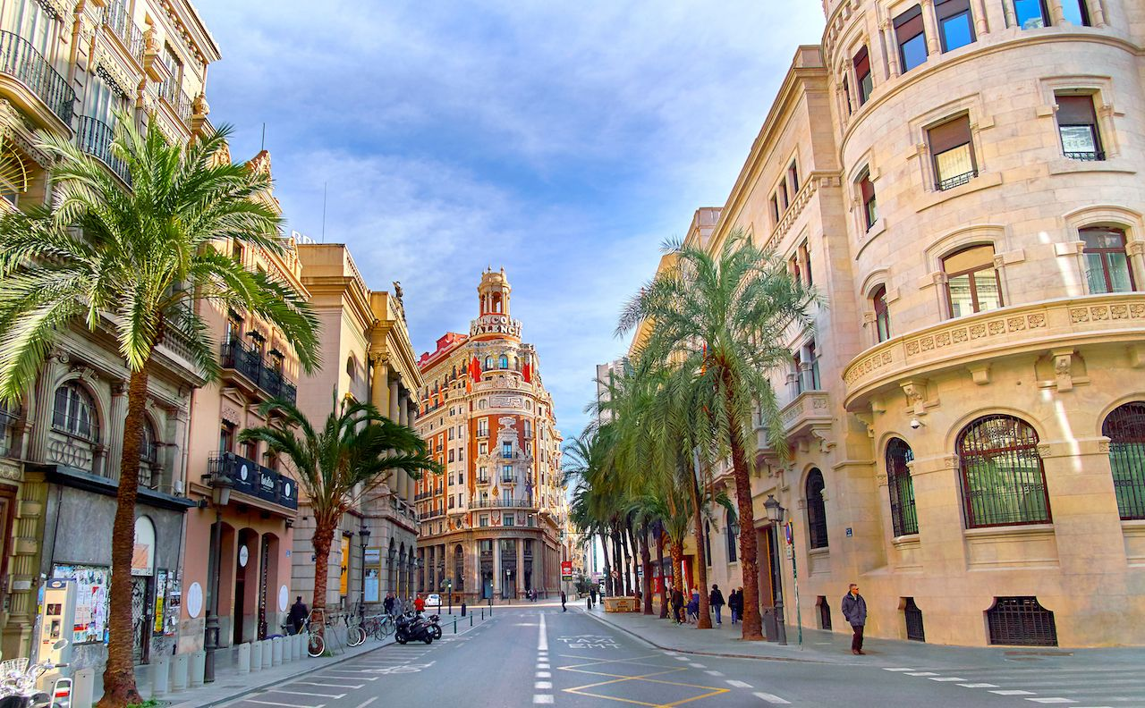 Palm Trees lining a street in Valencia, Spain