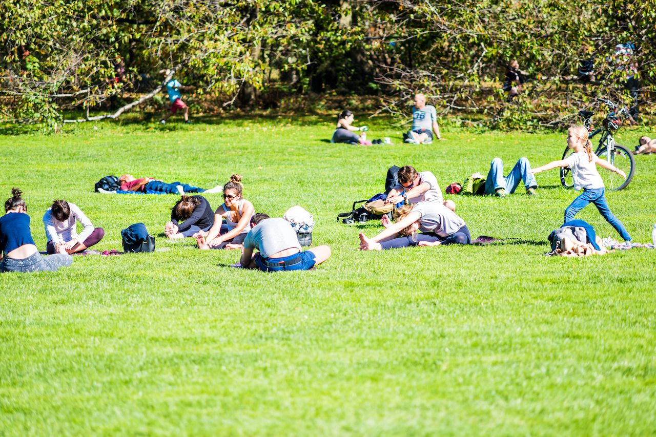 People stretching in Central Park
