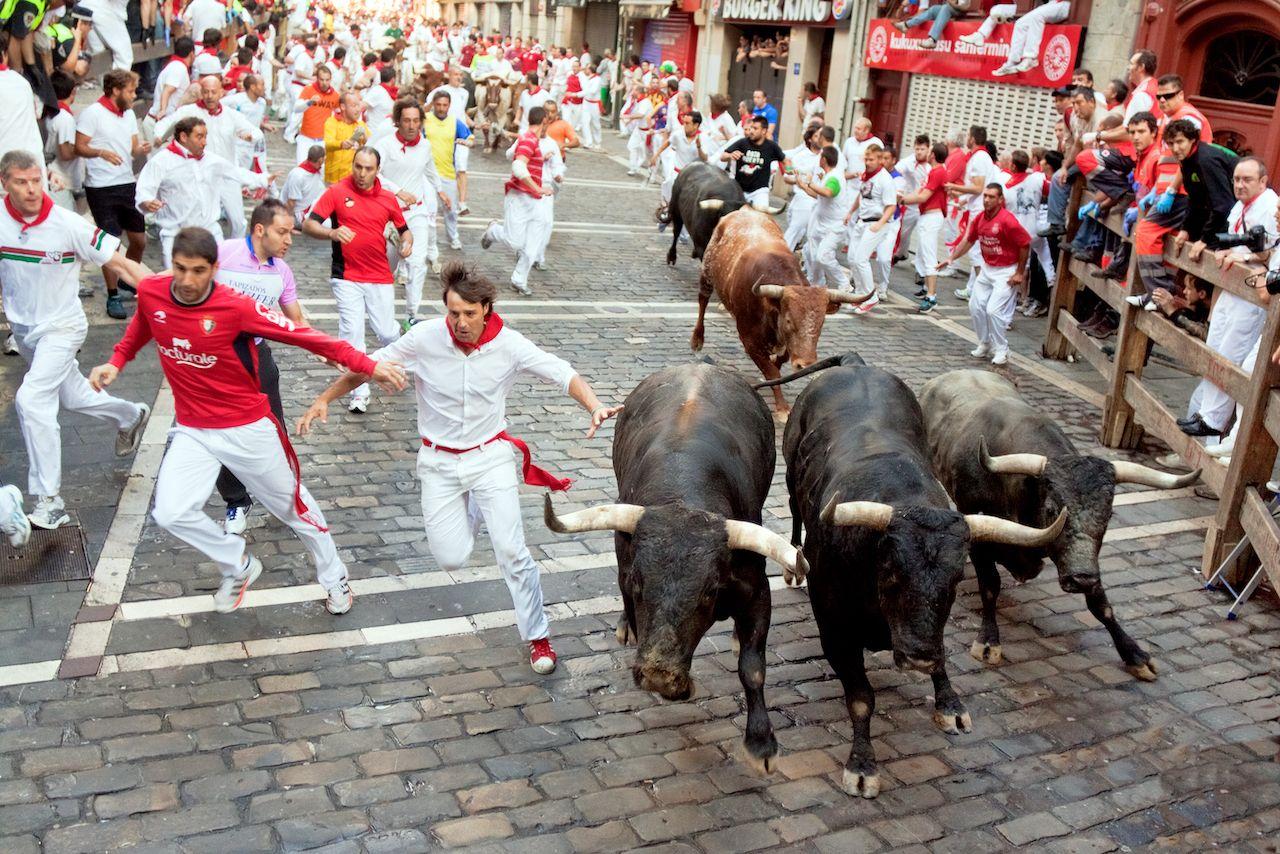 Saudia Arabia bull run