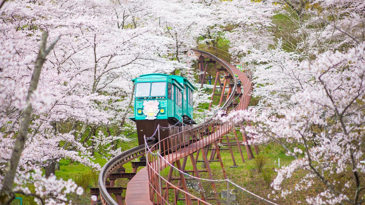 Slope Car Passing Sakura Tunnel, Sendai, Japan