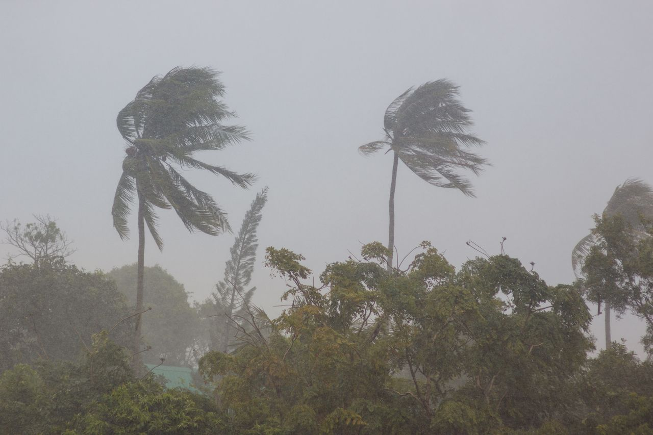 Tropical Storm Pabuk hits Thailand
