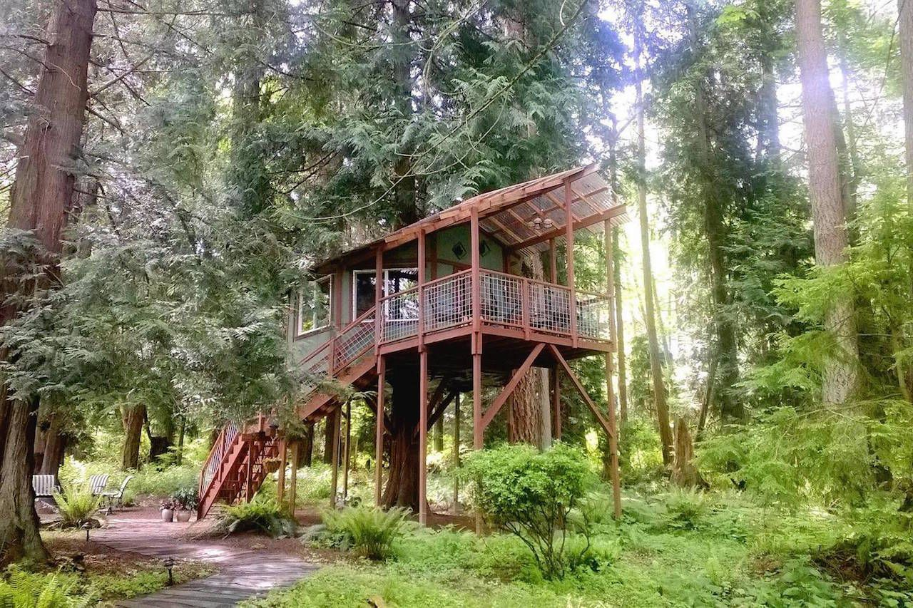 Treehouse, Washington