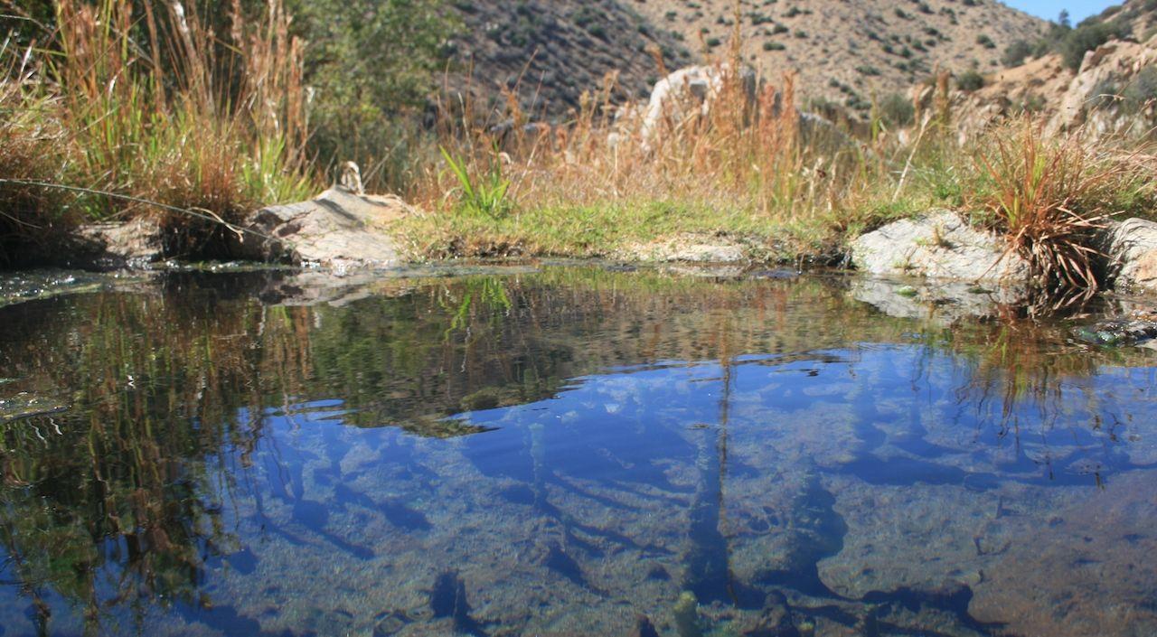 Water surface at Deep Creek Hot Springs, California