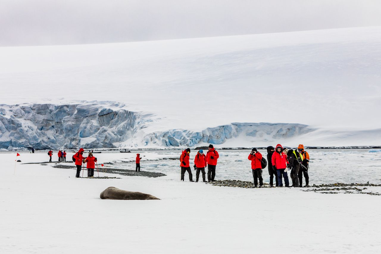 group of tourists wearing red jackets against white snow in Antarctica