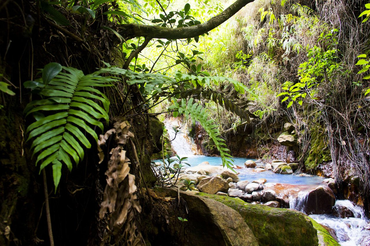 A natural hot pool in Dominica