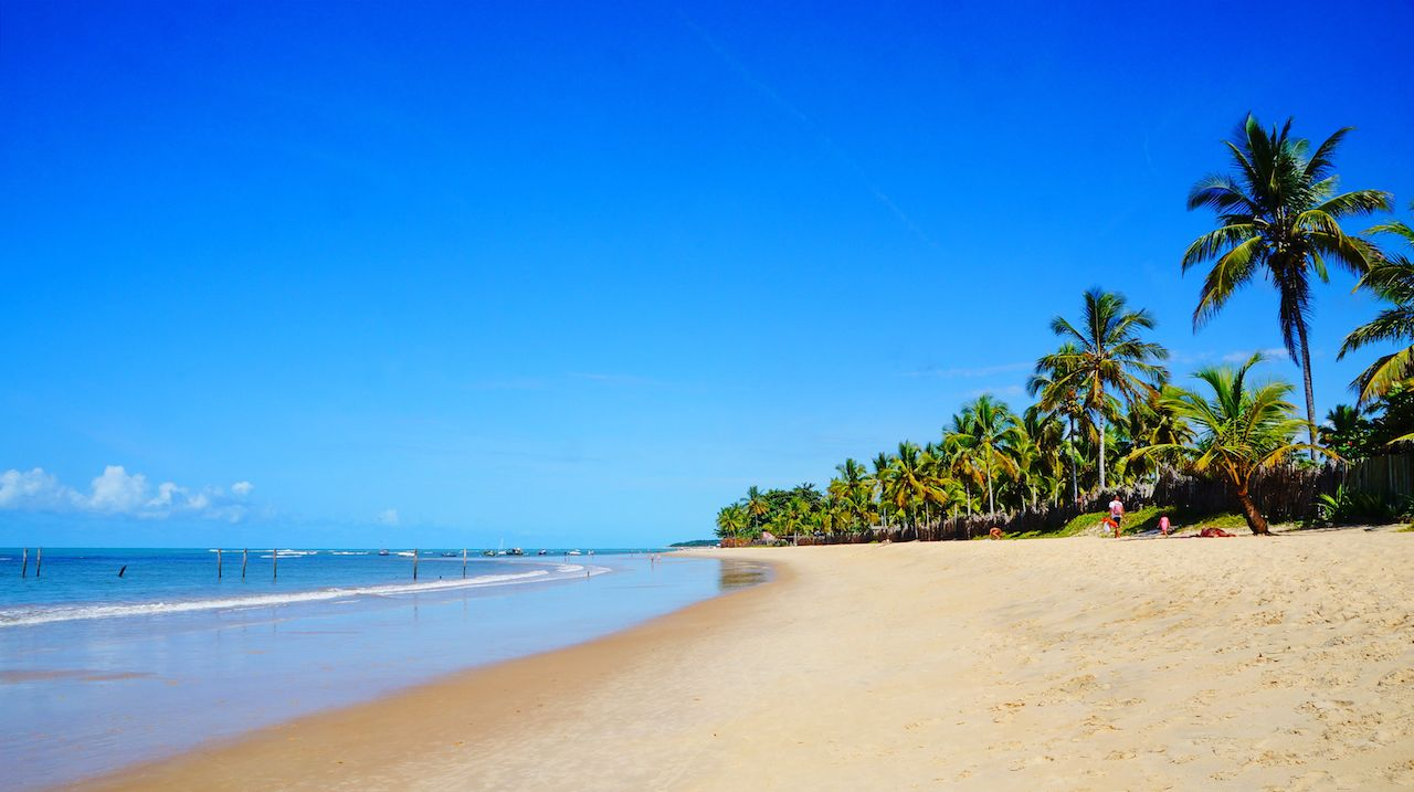 Beautiful Trancoso beach with palm trees, near Seguro Port in Bahia state, Brazil