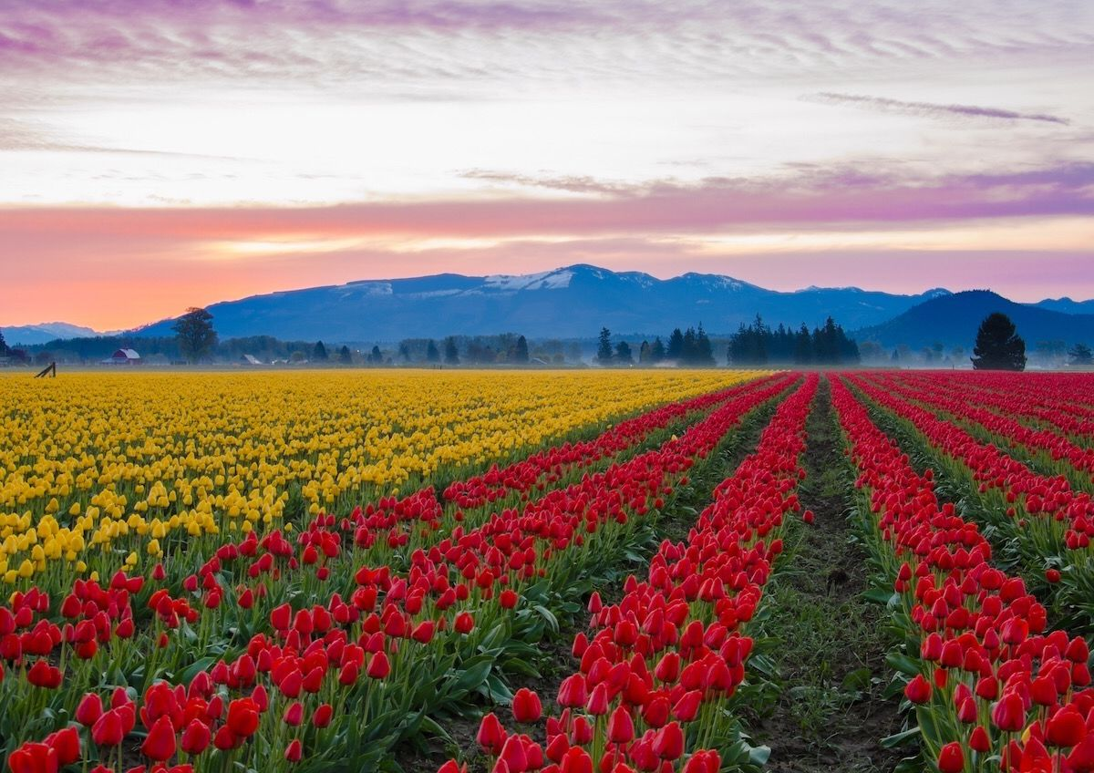 Why Skagit County is worth a stopover between Seattle and Vancouver