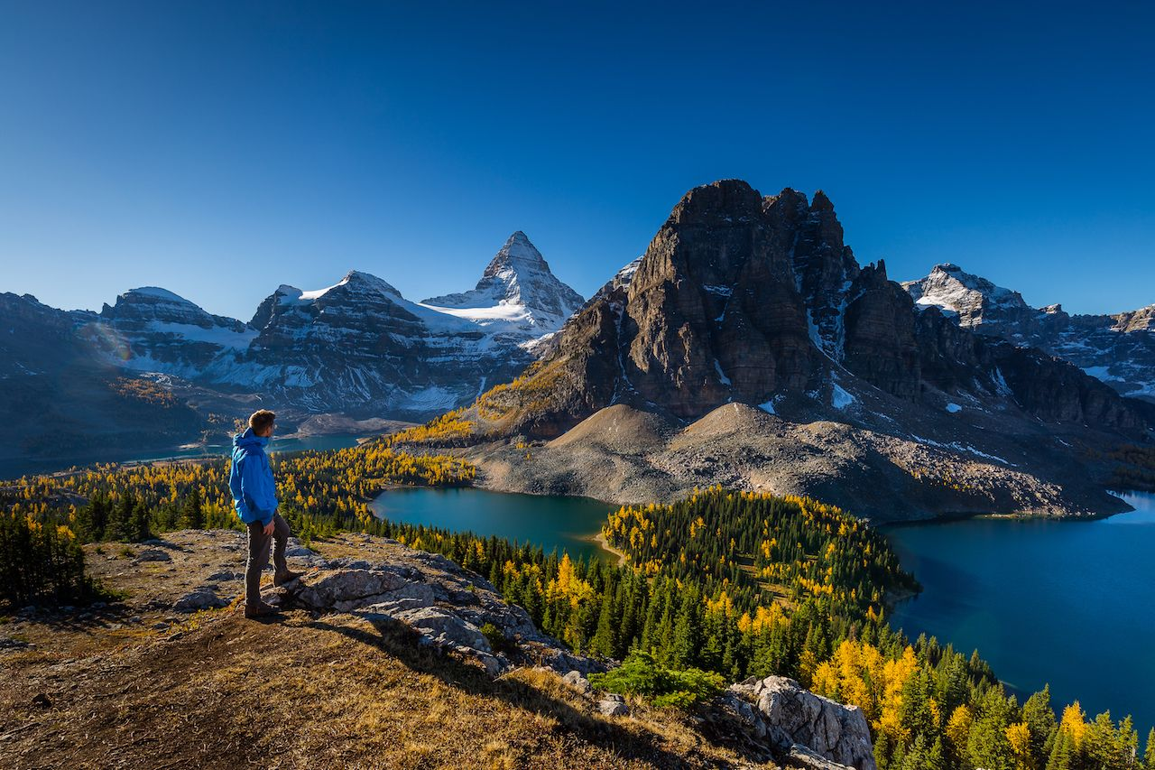 Mount Assiniboine in the morning during larp season from Nub peak