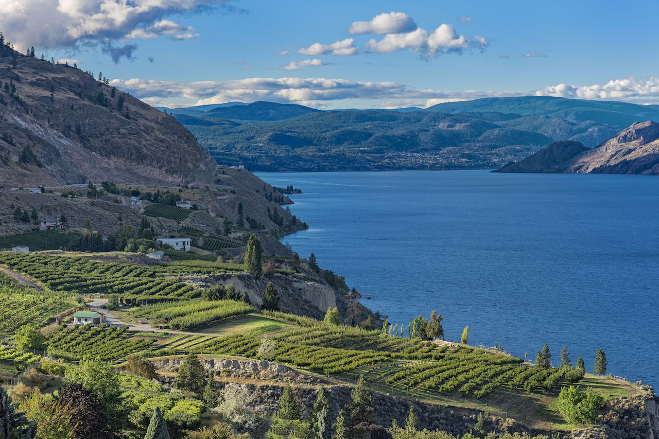 Okanagan Lake near Summerland British Columbia Canada with orchard and vineyard