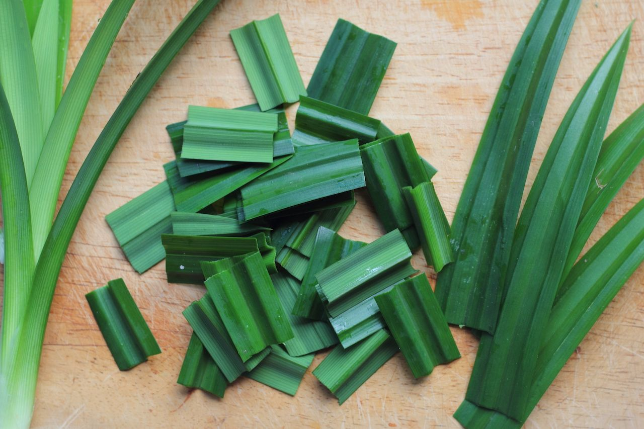 Pandan leaves used in Southeast Asian cooking