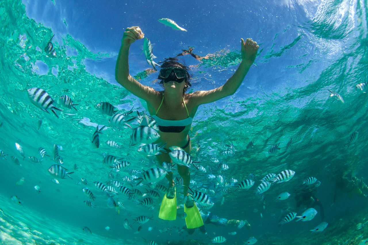 Person snorkeling in Mauritius