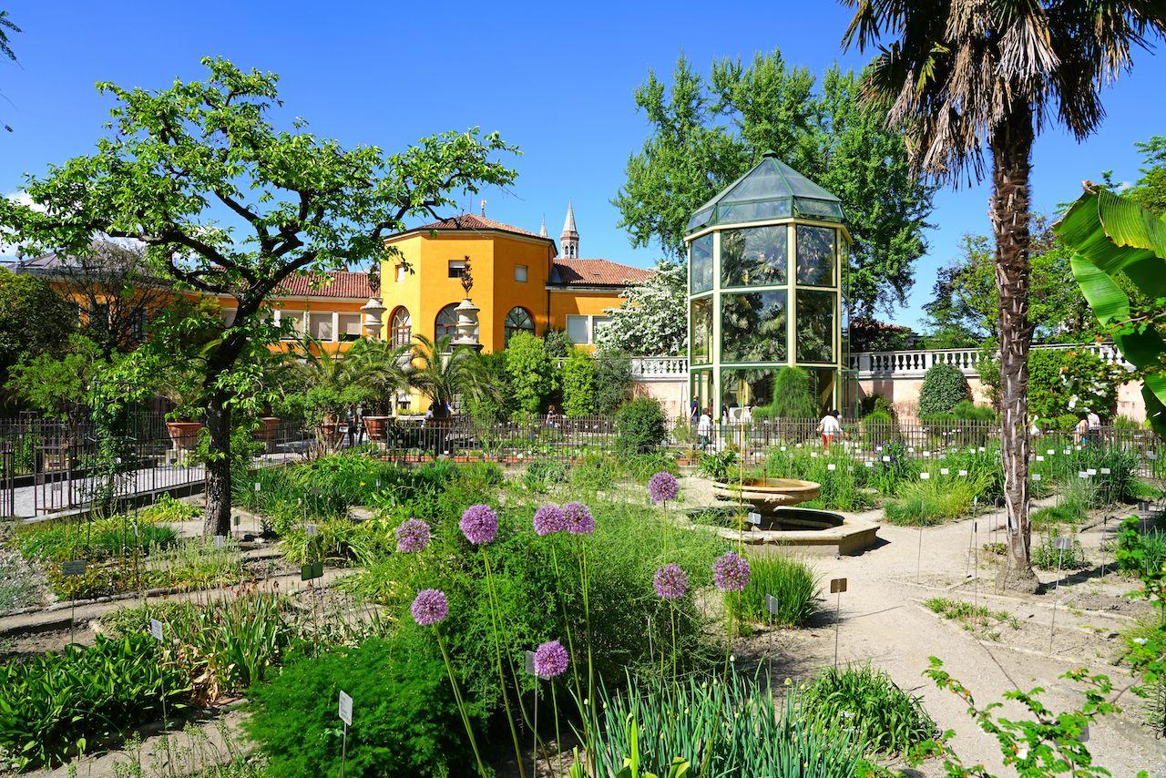 View of the landmark Orto Botanico di Padova at the University of Padua
