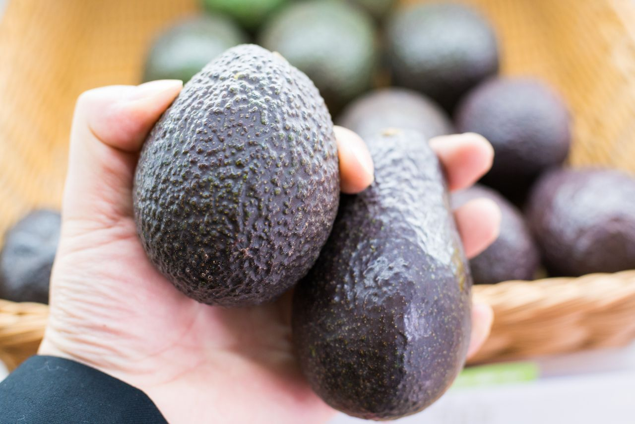 person holding two avocados