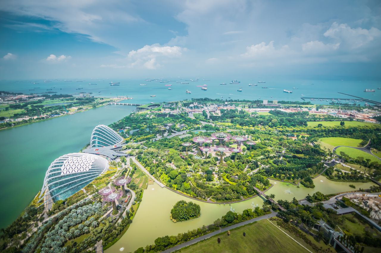 Aerial view of Super Trees at Gardens by the Bay