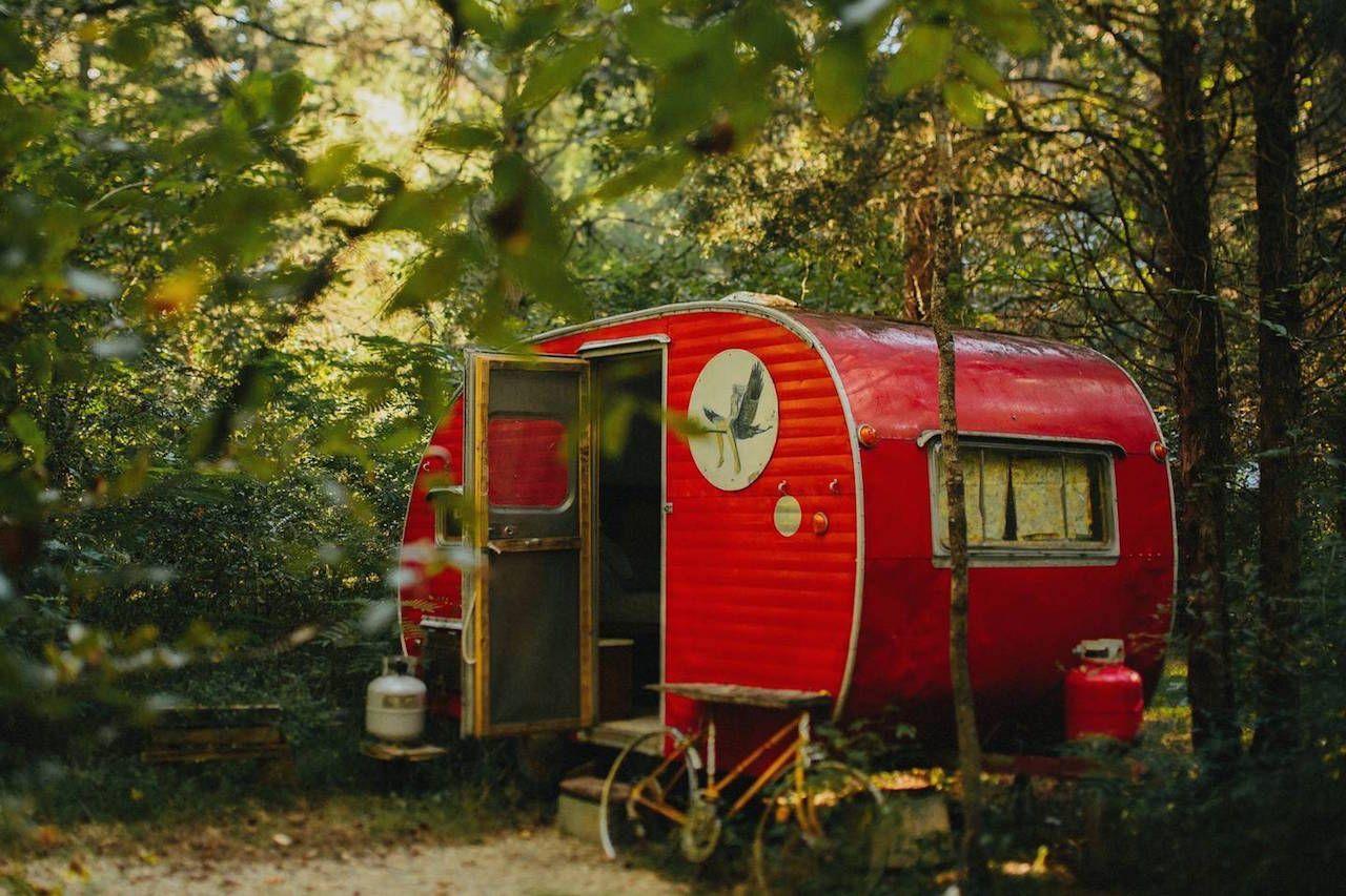 Camp G.R.I.T.S