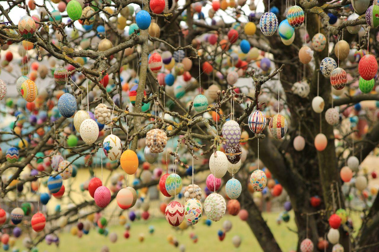 Famous Saalfeld Easter egg tree in Saalfeld, Thuringia