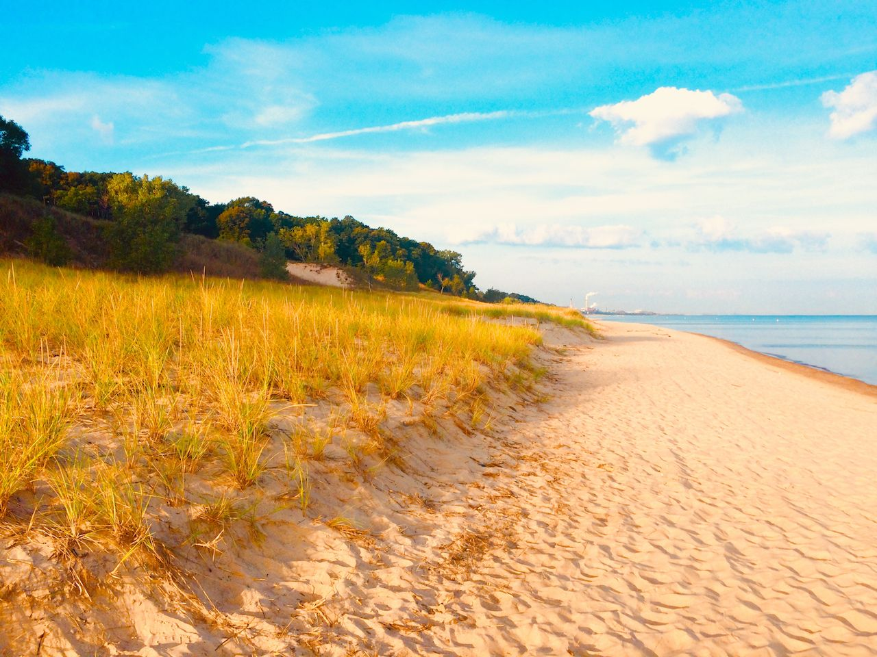 Golden Beachfront, Indiana Dunes