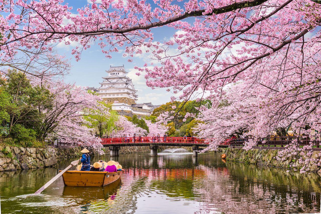 Himeji, Japan at Himeji Castle in spring season