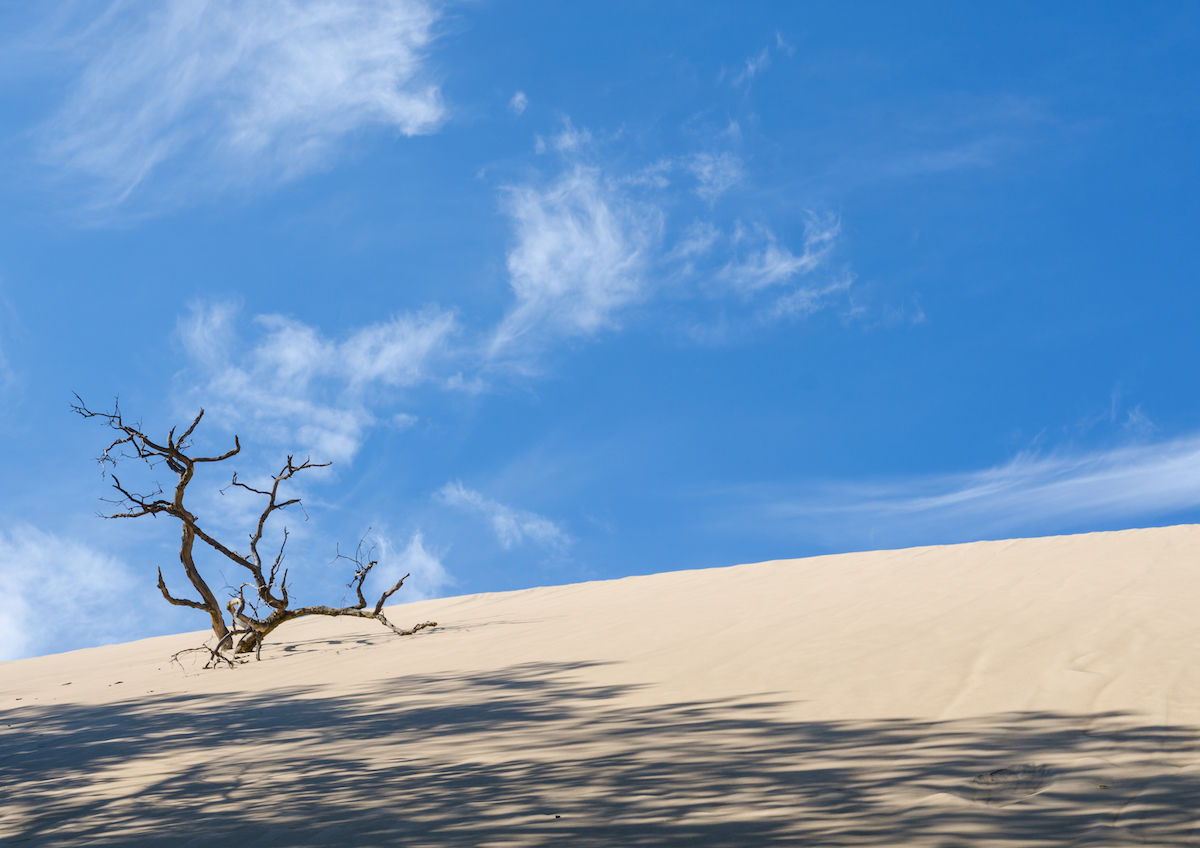 What to do and see at Indiana Dunes National Park