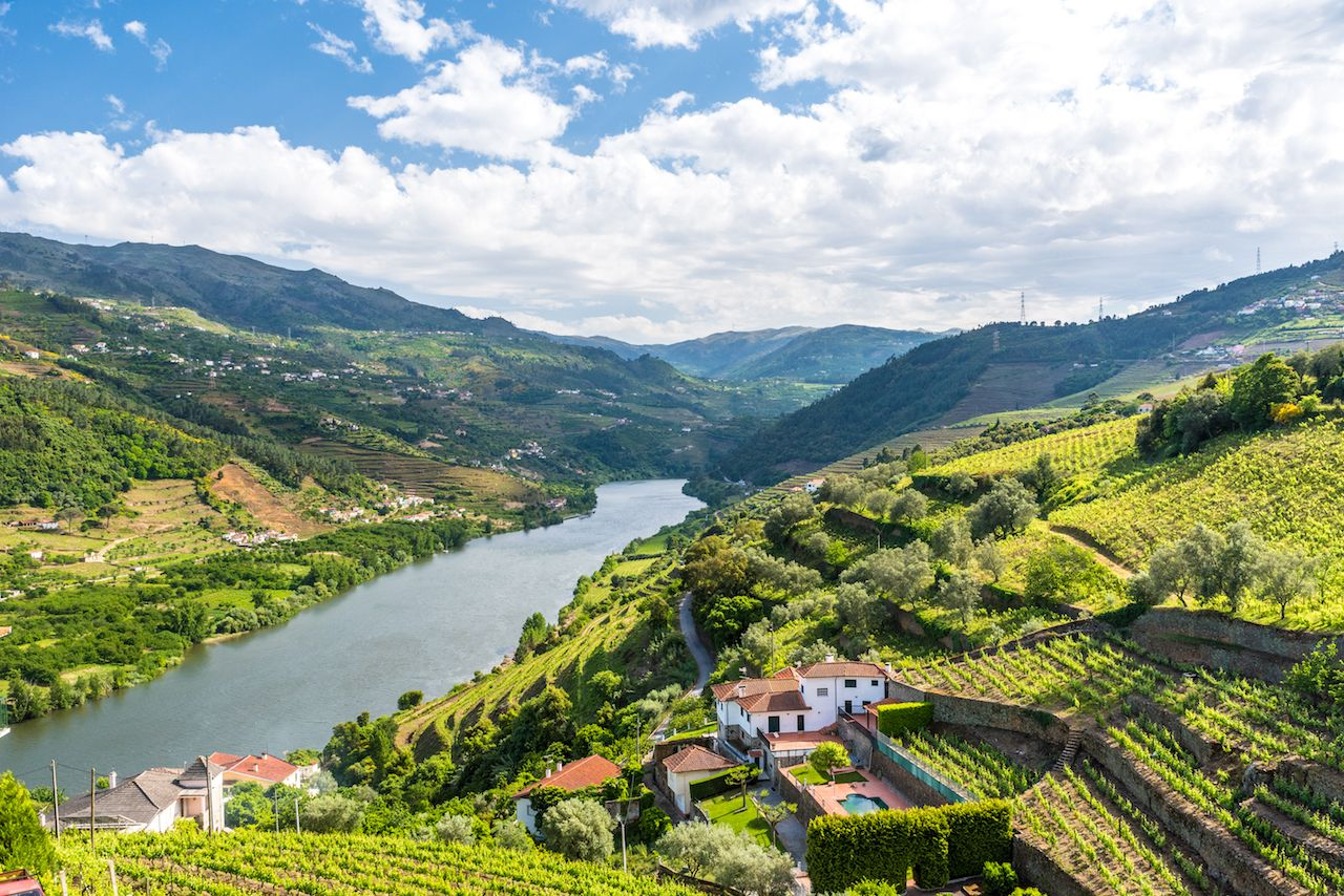 Landscape of the Douro River in Portugal