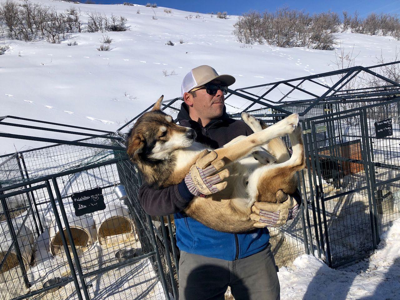 Man holding a sled dog