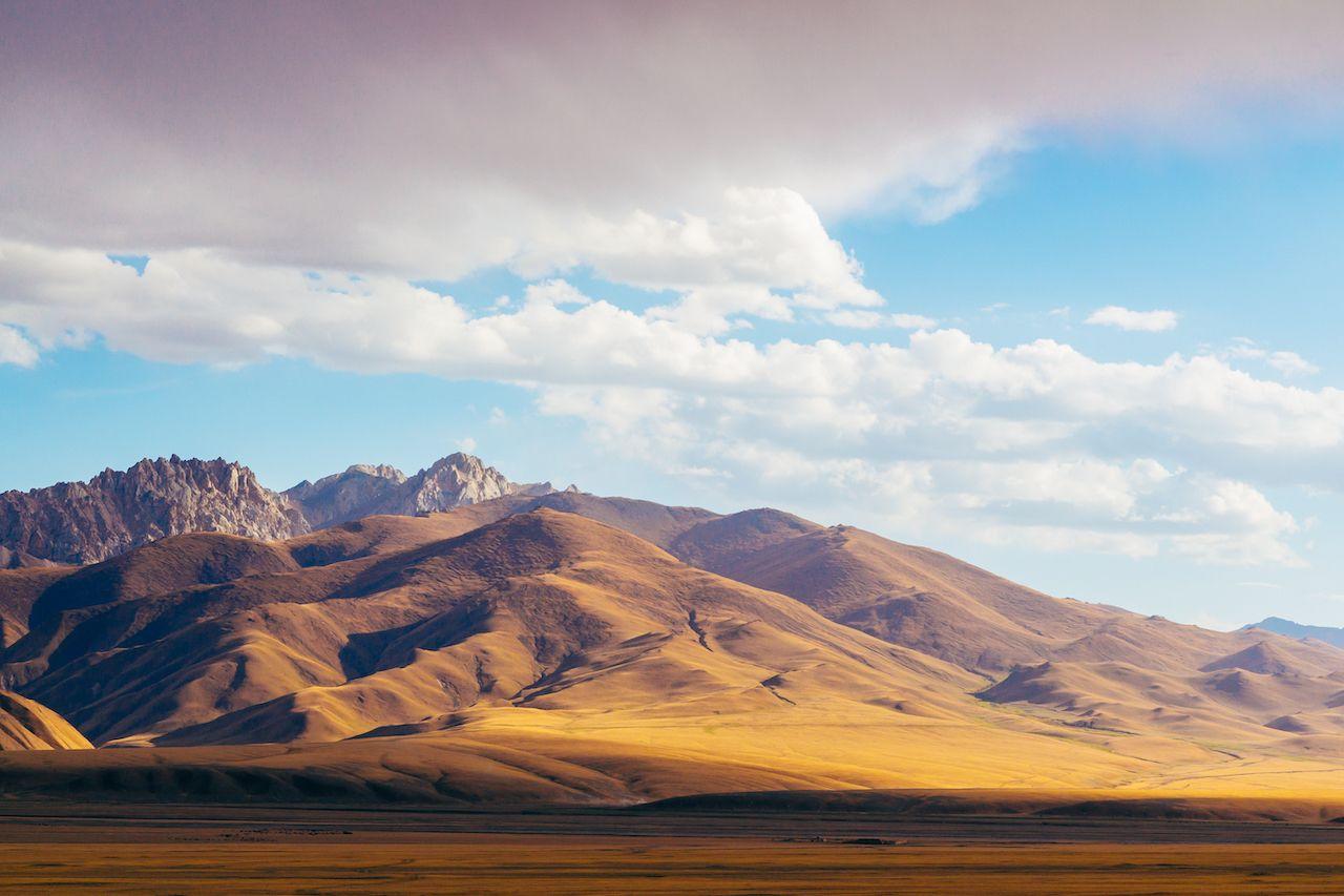 Where is the Eurasian pole
