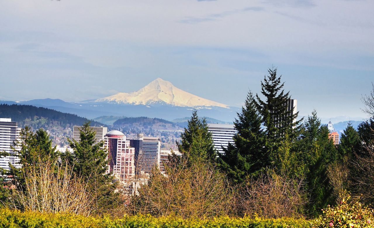 A View from the Washington park Portland