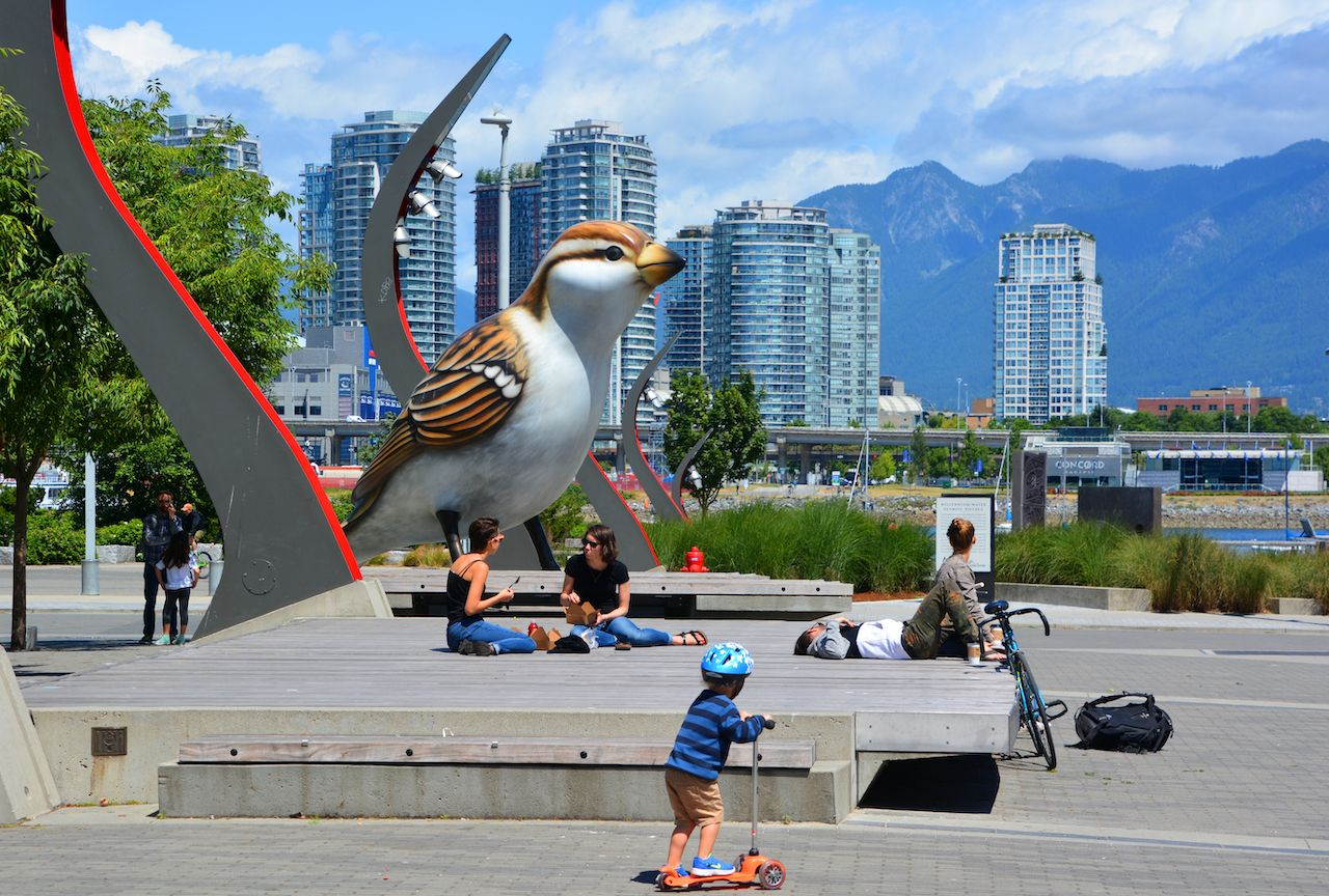 Birds comprises a pair of outdoor sculptures depicting sparrows by Myfanwy MacLeod in Vancouver