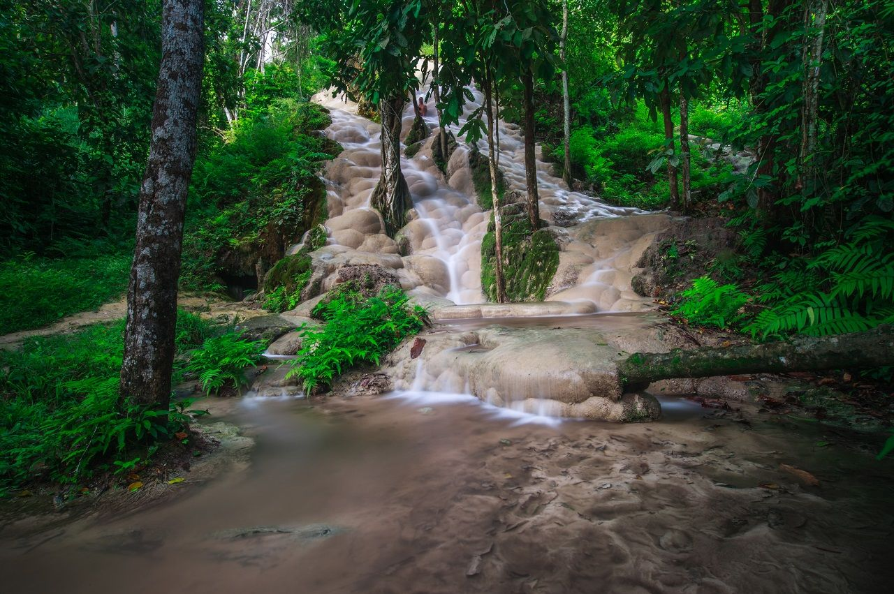 Bua Tong (Sticky waterfall) in north,Chiangmai,Thailand