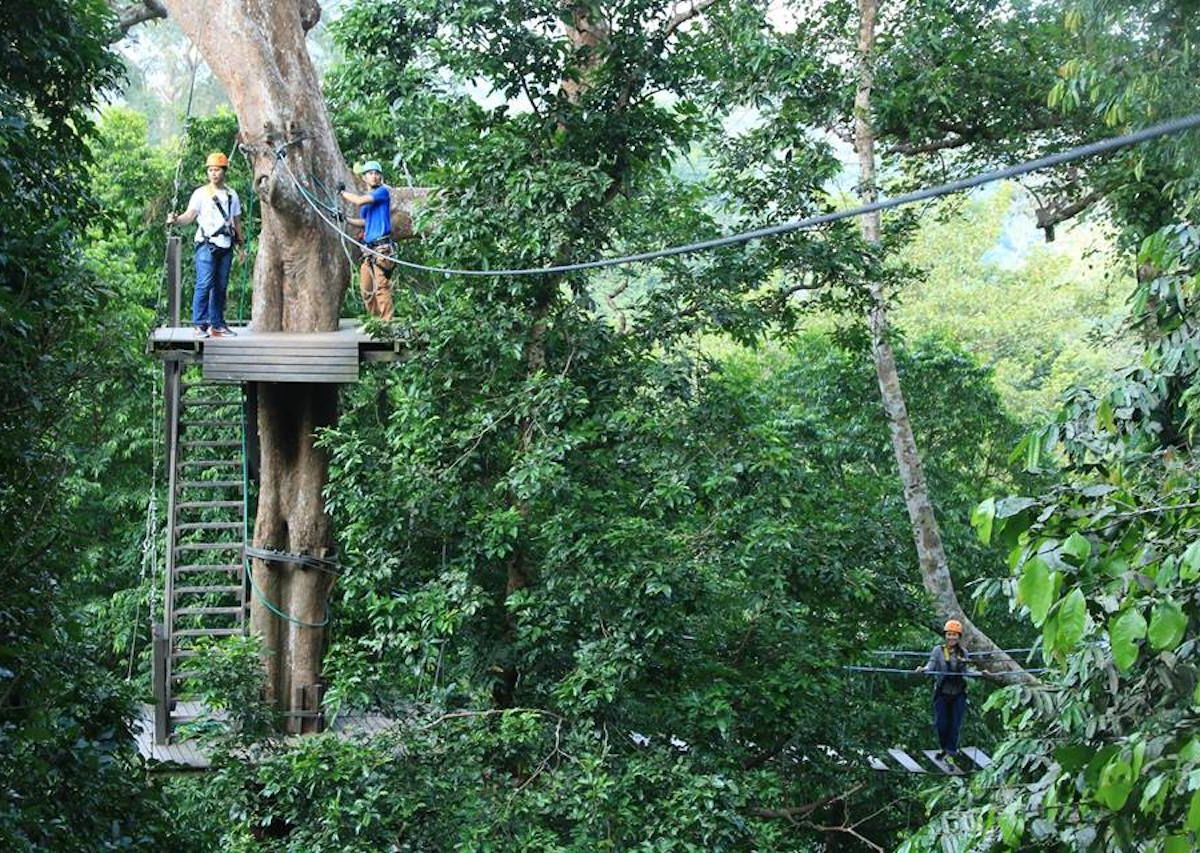 Man falls to his death in Thailand after zip-line wire breaks