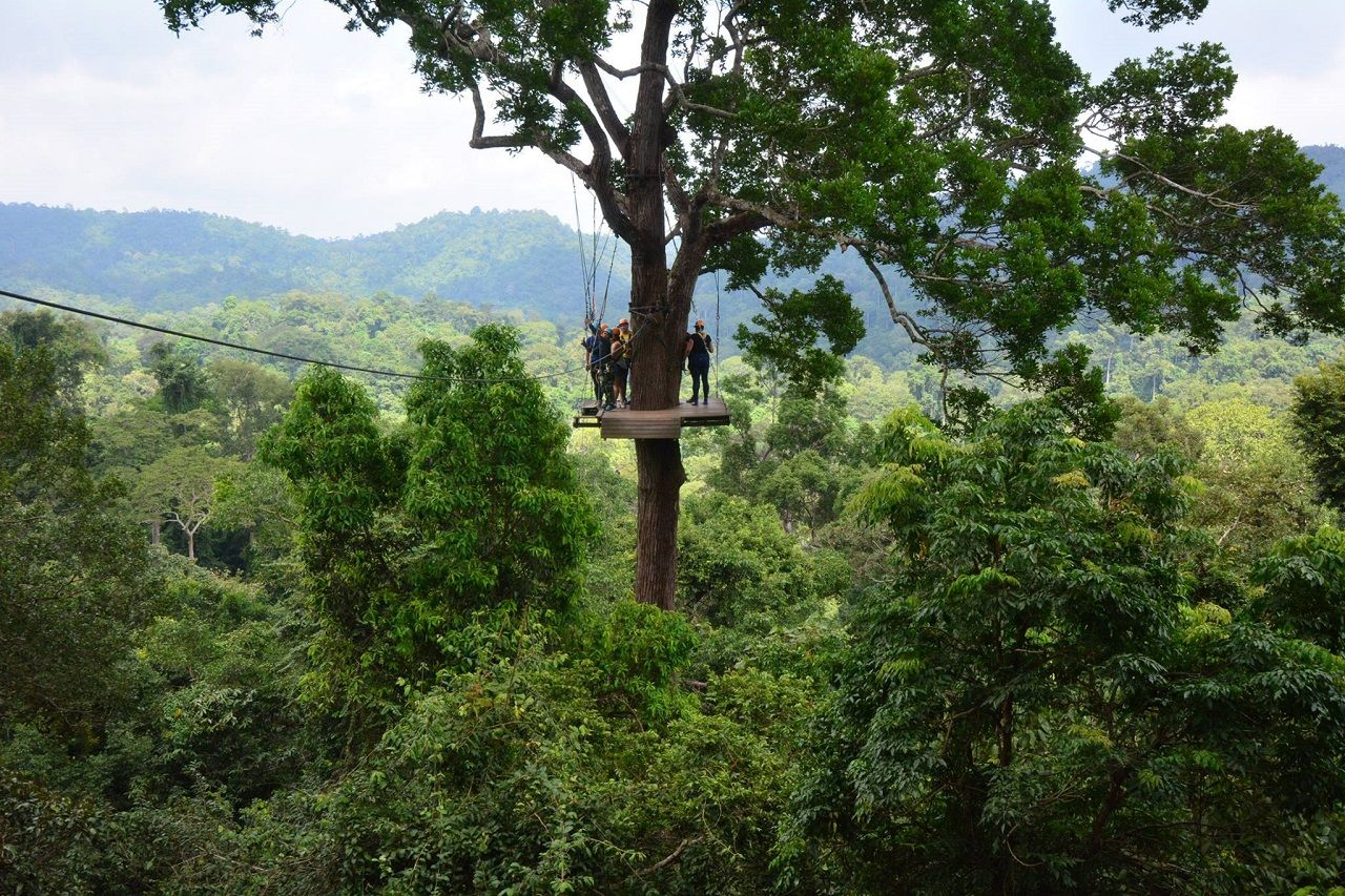 Flight of the Gibbon zip line in Thailand