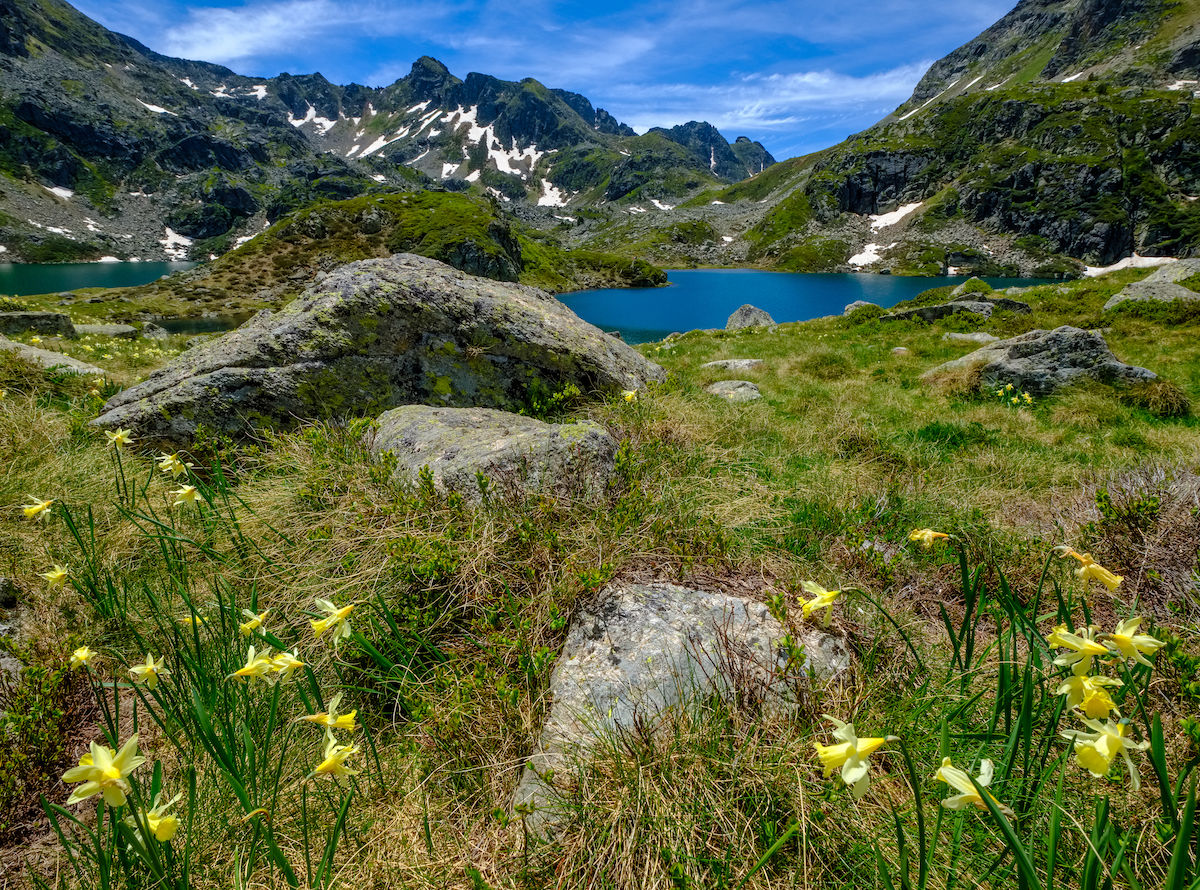 Microplastics discovered in the remote Pyrenees mountains