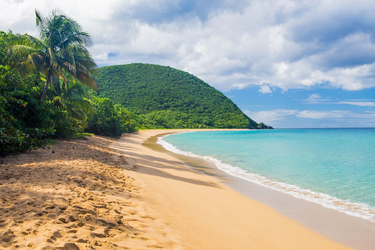 Great beach of Grand Anse near Deshaies village, Guadeloupe, Caribbean