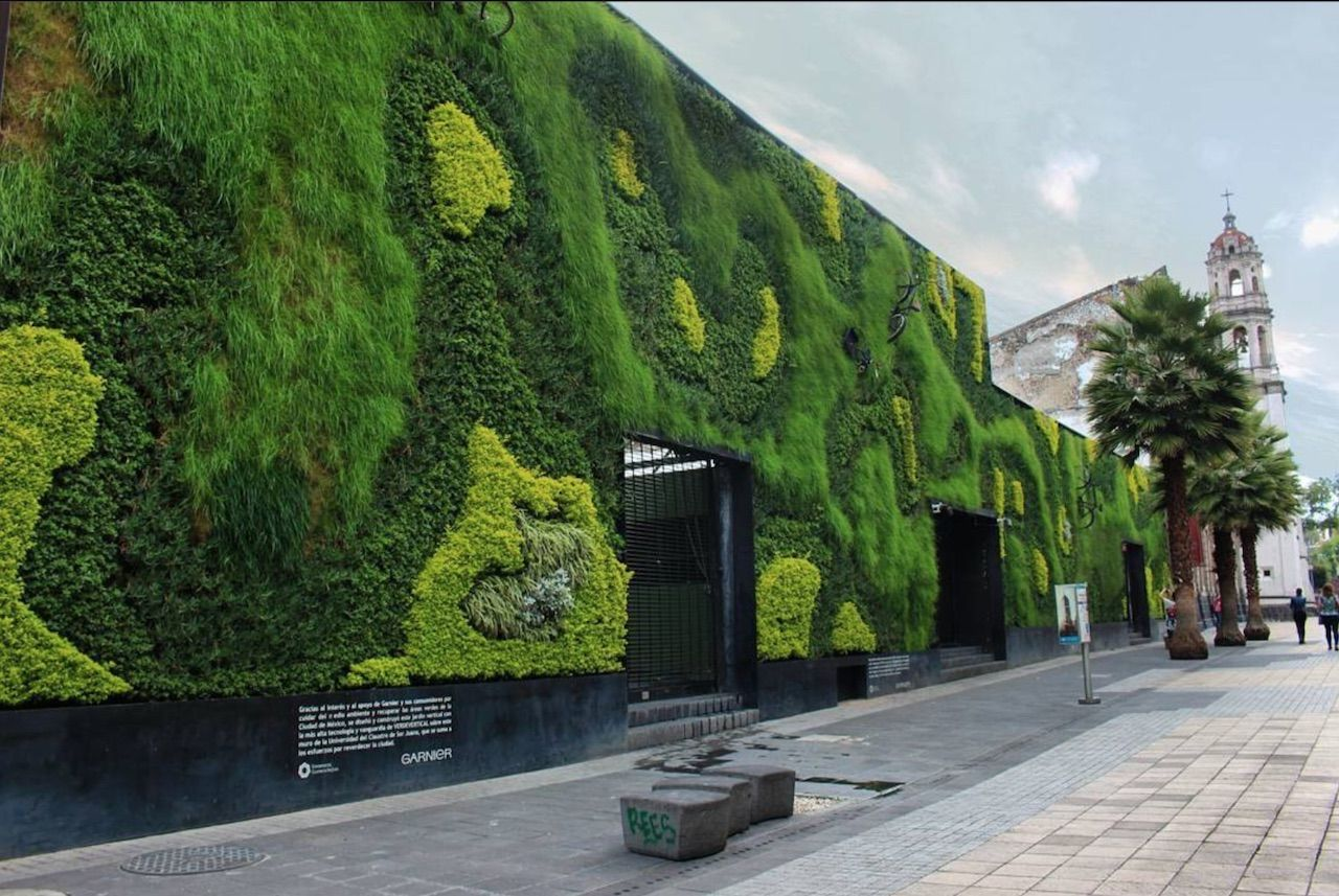 Green wall in University in Mexico City