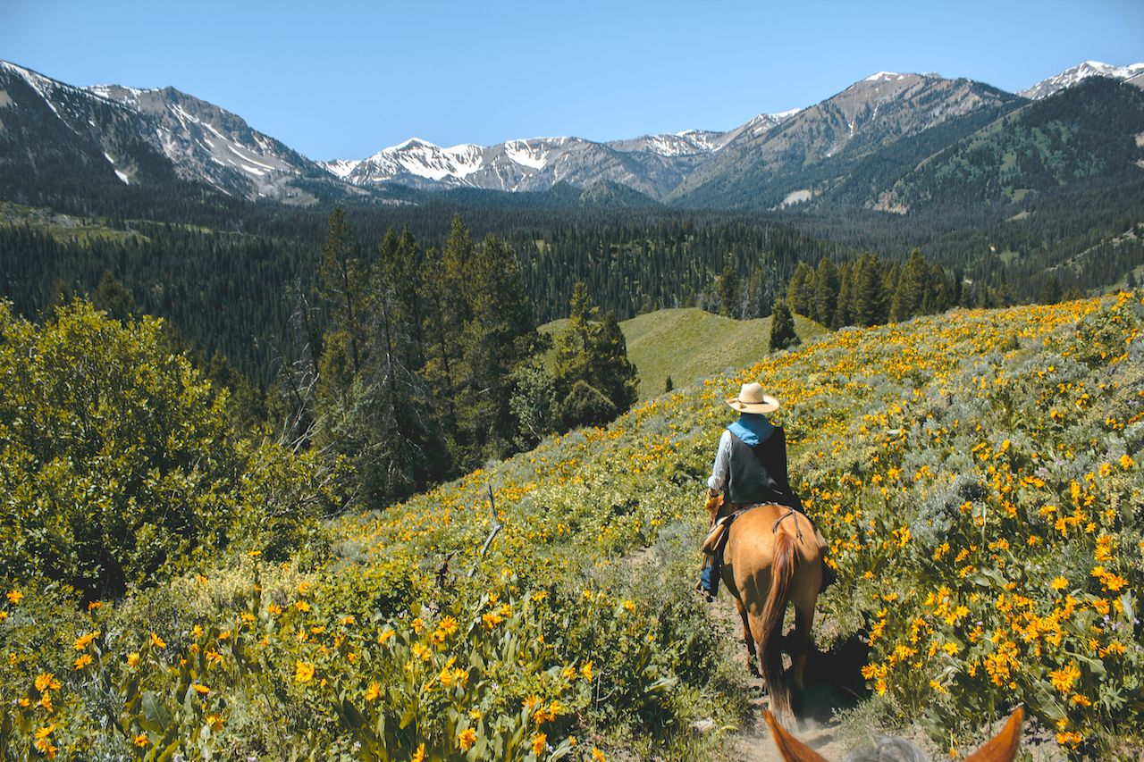 Horseback riding in the Grand Teton Mountain Range