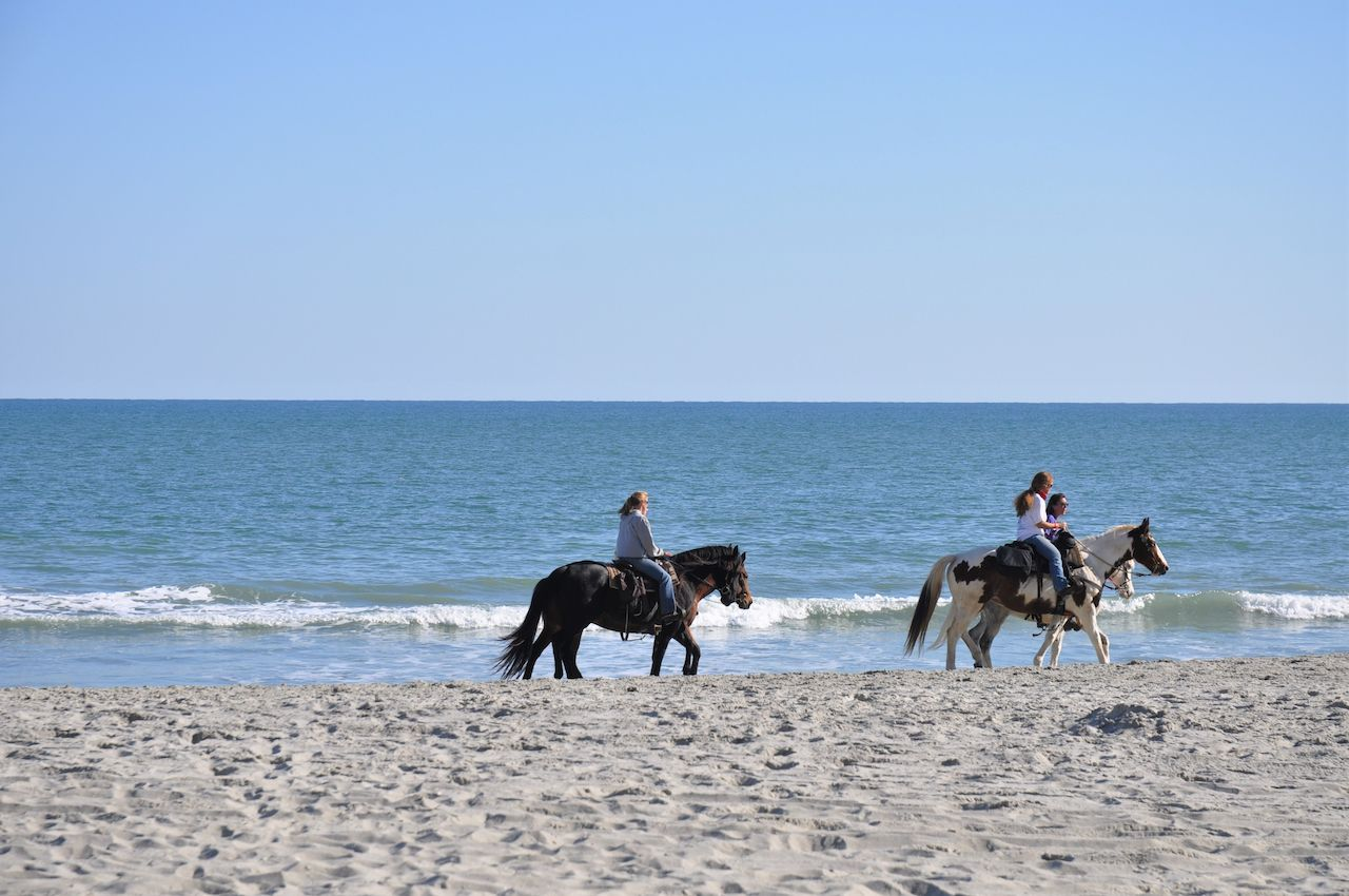Horseback riding on Myrtle Beach