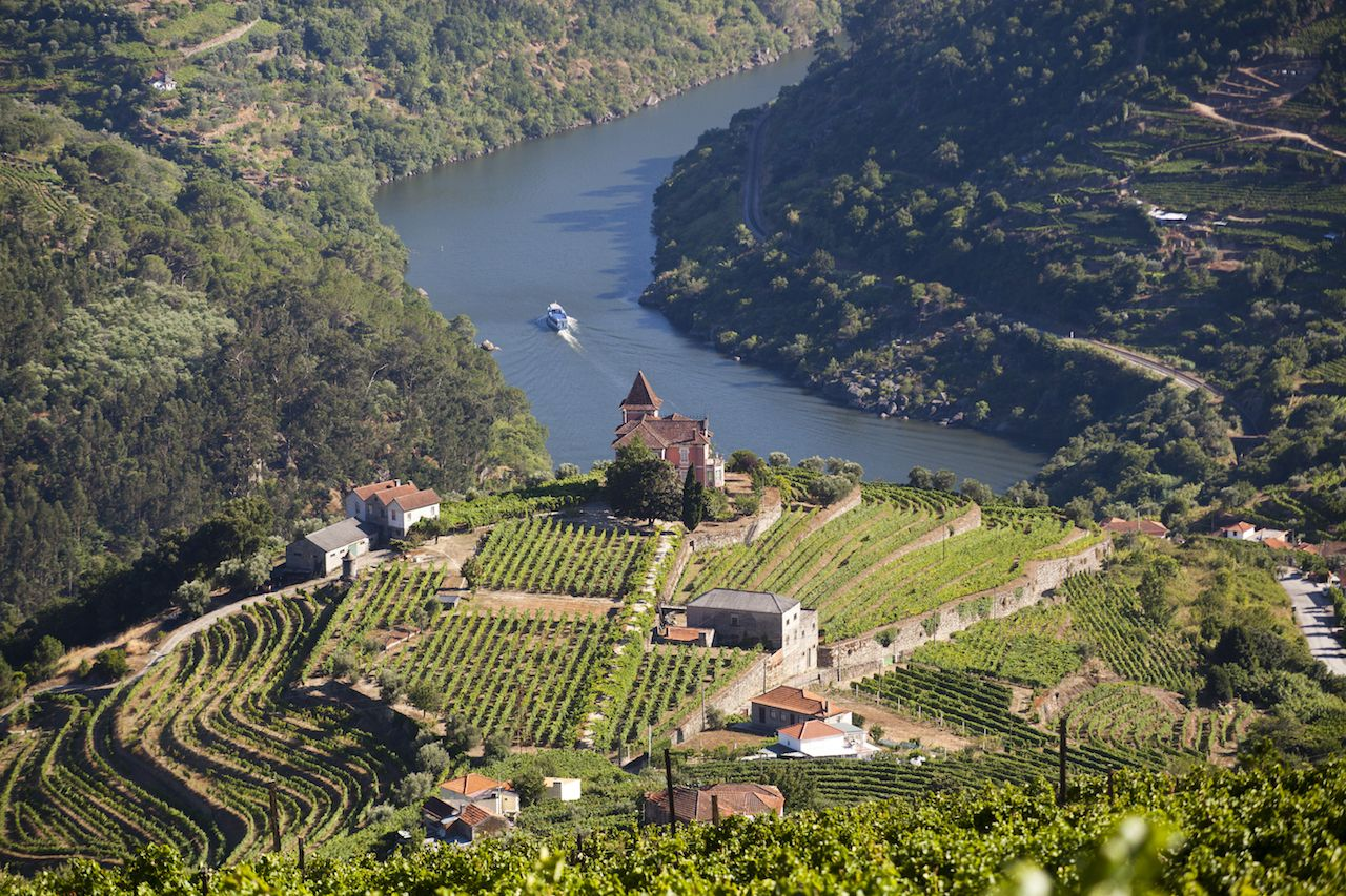 Guide to Portugal s top wine routes