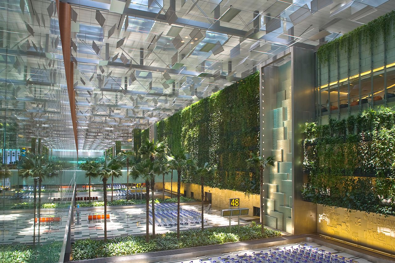 Living wall in the Changi airport