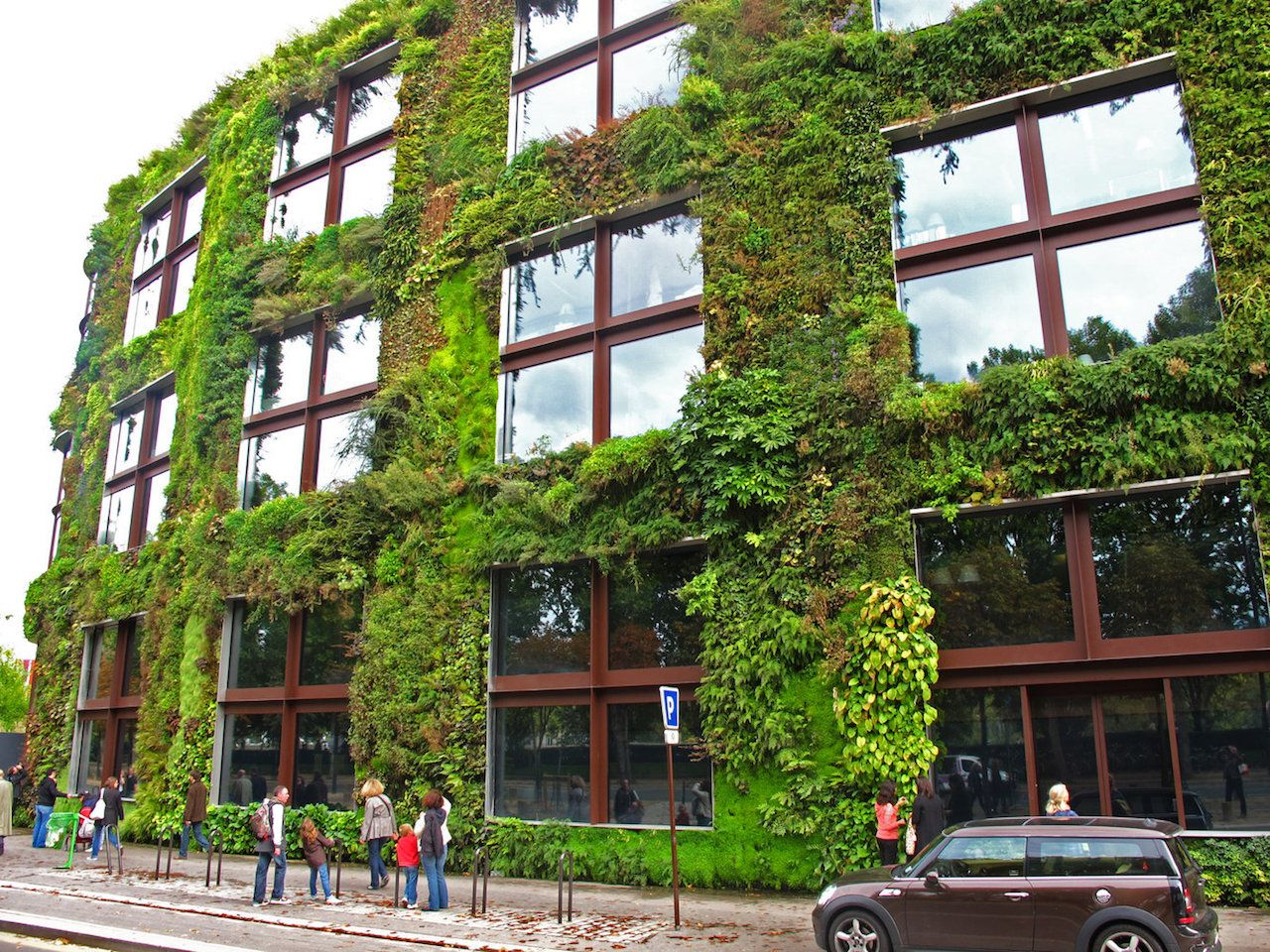 Massive living wall around a building