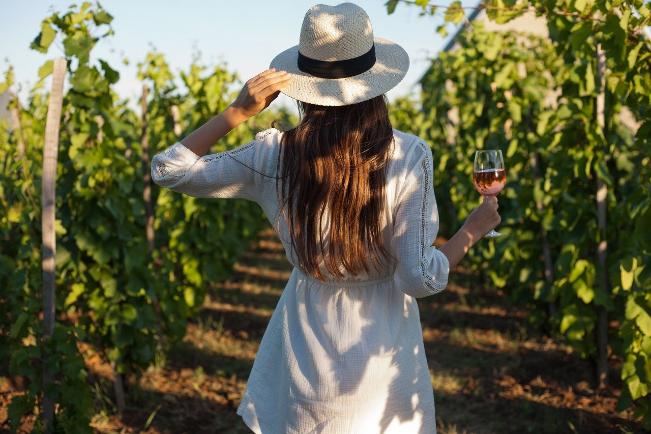 The best places for wine trip