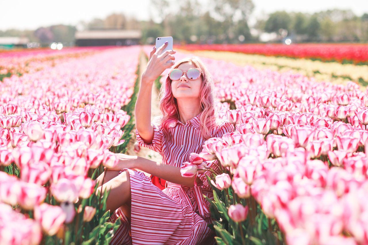 Photo ops destroying Dutch tulips