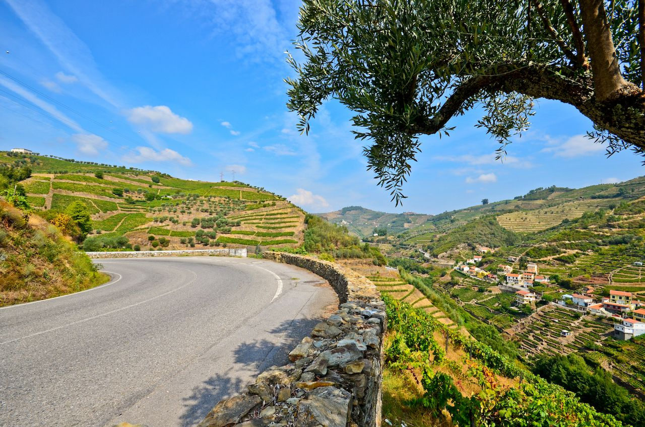 Road next to vineyards and small village near Peso da Regua, Portugal