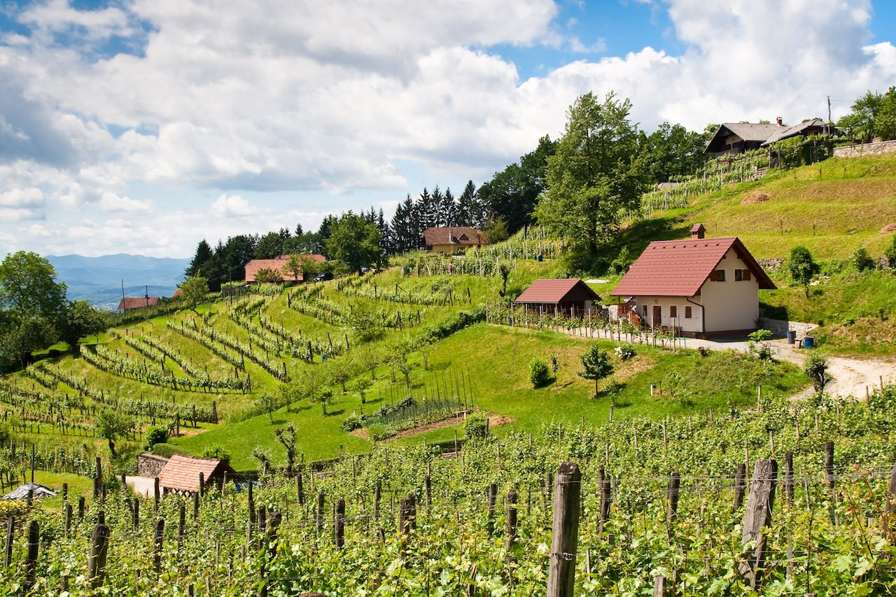 Underrated European wine regions