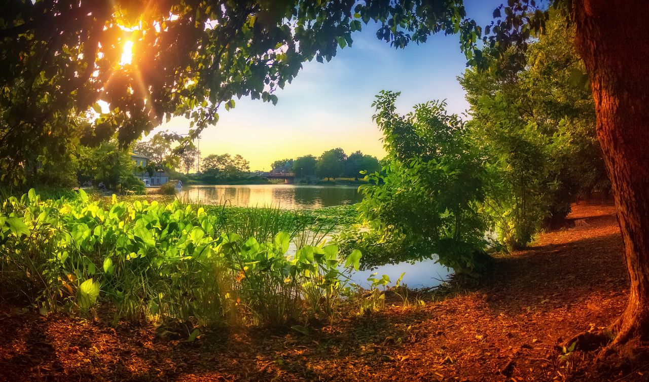 Sunset at the lagoon in Chicago's Humboldt Park