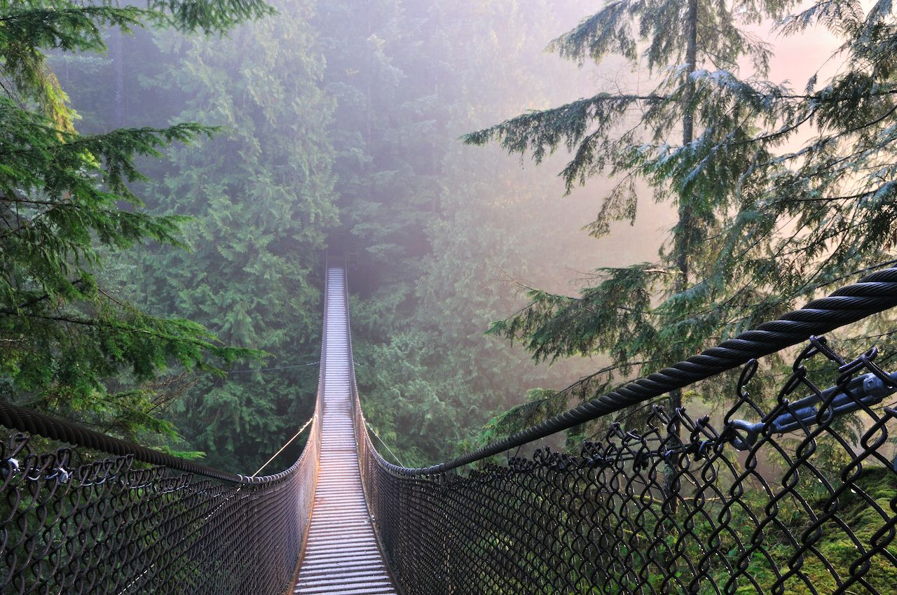 Suspension bridge in Lynn Canyon Park, Canada