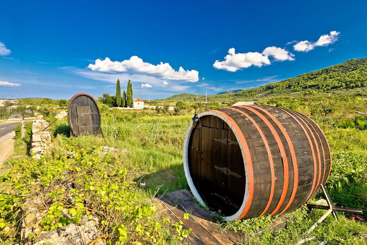 Wine barrels on Stari Grad plain, UNESCO world heritage site in Hvar island