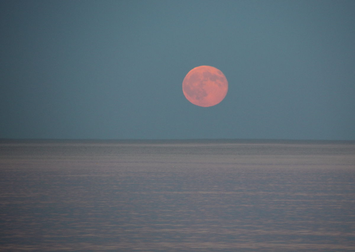 A full Pink Moon will be visible this Friday