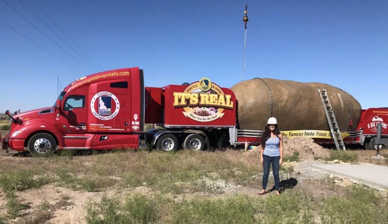 potato hotel Airbnb